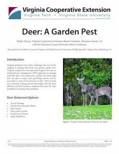 Deer publication cover
