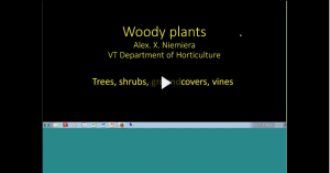 woody plants webinar intro slide
