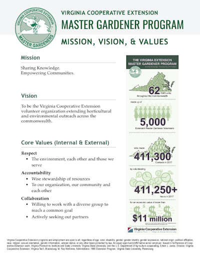 mission vision and values flier