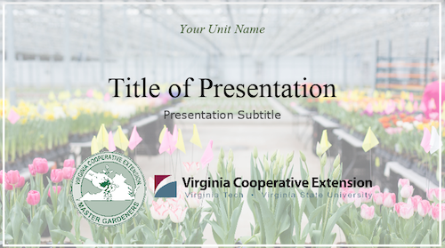 spring themed presentation template