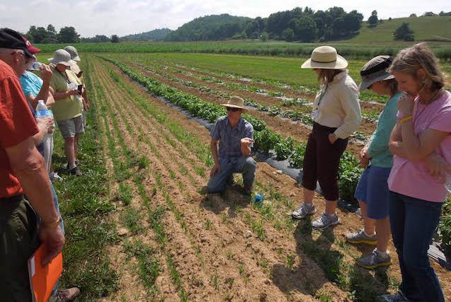 past mg college tour farm