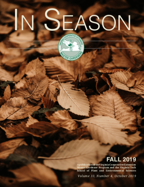 cover of fall 2019 in season