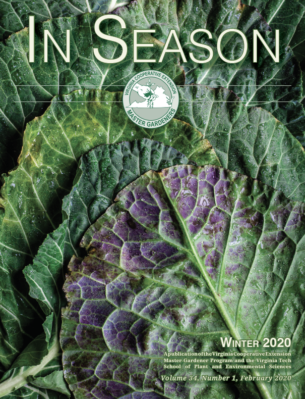 cover of winter 2020 in season
